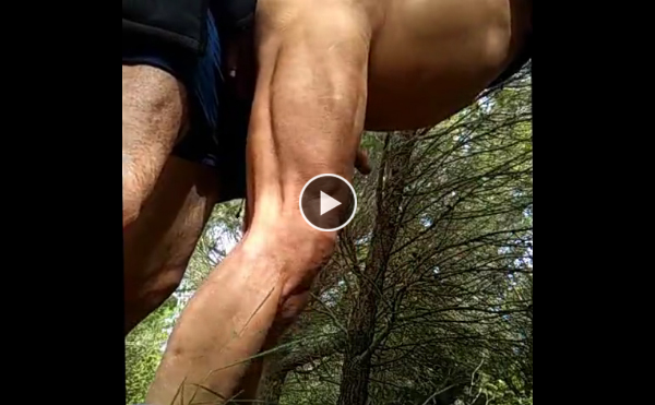 Cumdump in the wood